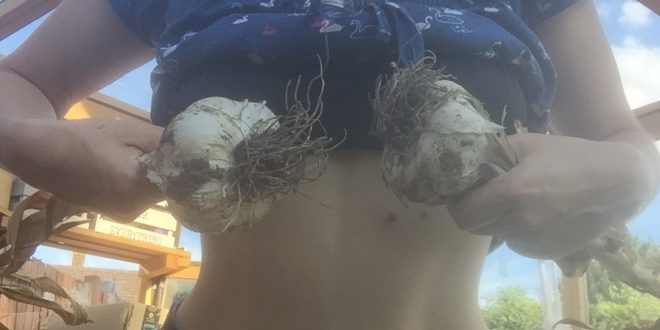 Garlics in front of breasts