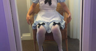 Bunny dressed as Alice in Wonderland, sitting in a wicker chair
