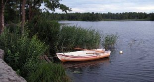 Rowing boat by lake