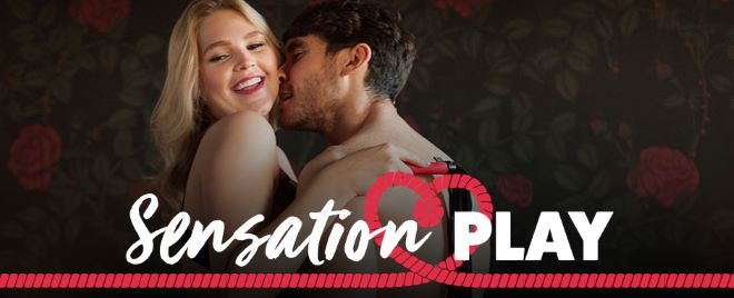 Lovehoney Sensation Play banner